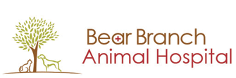 Bear Branch Animal Hospital
